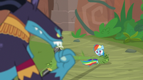 """Rainbow """"we didn't see any cats!"""" S9E21"""