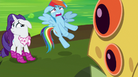"""Rainbow Dash """"hold that thought!"""" S8E17"""