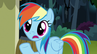 """Rainbow Dash """"maybe she went to"""" S7E18"""