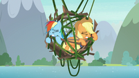 Rainbow and Applejack's cage stops falling S8E9