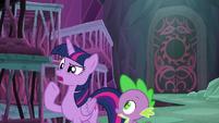 "Twilight Sparkle ""is everypony ready?"" S8E26"