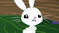 Angel Bunny pantomiming desperately S9E18