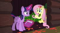 """Fluttershy """"I guess we should find out why"""" S5E23"""