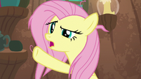 """Fluttershy """"he knows I have work to do"""" S9E18"""