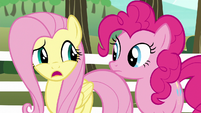 """Fluttershy """"we don't have a team"""" S6E18"""