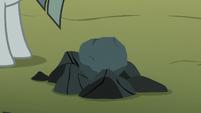 Ordinary-looking rock on the farm S8E3