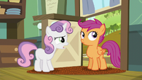 Sweetie Belle brings up the fact that Scootaloo and Rainbow are not technically sisters S5E17