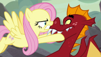 Fluttershy getting angry at Garble S9E9