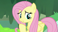 Fluttershy unsure about the amount of moss S7E20