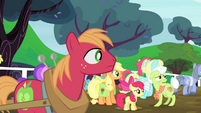 The Apples looking at where the ponies are heading to S4E20