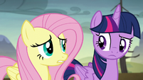 Twilight and Fluttershy hear the gate opening S5E23