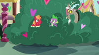 Big Mac notices Spike and Discord in the bushes S8E10