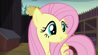 """Fluttershy """"a cake that says 'Let's be friends!'"""" S5E23"""