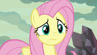 Fluttershy looking very puzzled S9E9