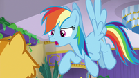 "Rainbow Dash ""sleeping the whole time"" S8E5"