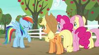 """Rainbow Dash """"that makes me an expert"""" S6E18"""