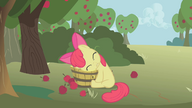 S01E12 Załamana Apple Bloom