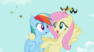S02E07 Fluttershy i Rainbow