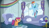 S06E14 Rainbow opowiada o swoich derbach