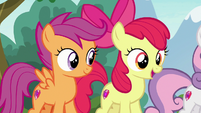 Apple Bloom -you can try 'em all!- S7E21