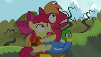 Apple Bloom and Big Mac frightened S4E09