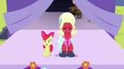 Apple Bloom and Orchard Blossom begin singing S5E17.png