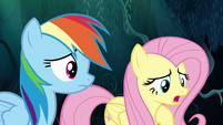 """Fluttershy """"worried that I'd fail every time"""" S6E11"""