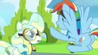 "Rainbow Dash ""you were awesome!"" S6E24"