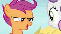 "Scootaloo ""an apple cannon!"" S7E8"
