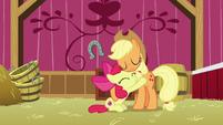 Applejack and Apple Bloom hugging S9E10