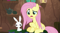 """Fluttershy """"is this what you meant"""" S9E18"""