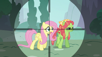 Fluttershy in Discord's crosshairs S5E7