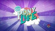 Logo Pony Life