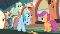 "Rainbow Dash ""there are no winners"" S4E24"