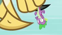Roc pecking its beak on Spike's head S8E11