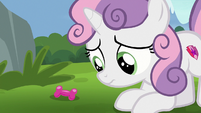 Sweetie Belle looking at Ripley's squeak toy S7E6