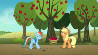 Applejack rolling her eyes at Rainbow Dash S8E5