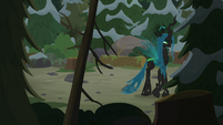 Chrysalis walking through the forest S9E8