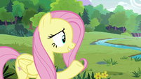 """Fluttershy """"the animals can return to the forest"""" S7E5"""
