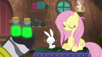 Fluttershy and Angel nod to Zecora S9E18