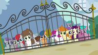 Foals outside Diamond Tiara's front gate S4E15