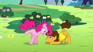 S04E12 Pinkie Pie patrzy na Cheese'a z góry