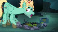"""Zephyr Breeze """"put the old kettle on"""" S6E11"""