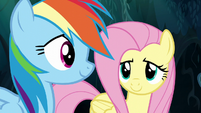 Fluttershy and Rainbow make a breakthrough S6E11