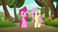 """Pinkie Pie """"if anypony in this town cares"""" S6E18"""