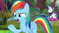 """Rainbow Dash """"too bad we can't do"""" S8E17"""