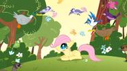 S01E23 Fluttershy wśród zwierzątek