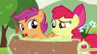 "Scootaloo ""non-Pegasus ponies fall through the clouds"" S7E7"