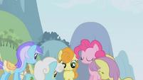 The ponies crowd around Twilight S1E03