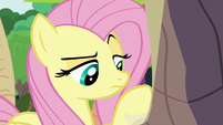Angel looks at Fluttershy's to-do list S9E18